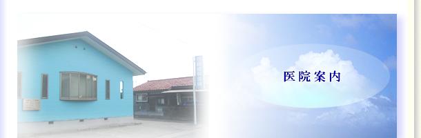 インプラント 歯科 神奈川県小田原市